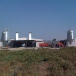 Prefabrik tavuk çiftliği